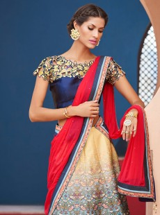 Adorning Look Silk Printed Designer Lehenga Choli