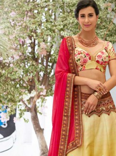 Gorgeous Multi Color Designer Lehenga Choli